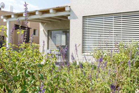 כמו מרבית הבתים בשכונה, גגו שטוח והוא טויח בטיח פיגמנטי (צילום: אורית ארנון)