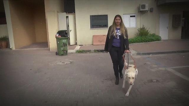 זיו וכלבת הנחייה שלה, דיווה ()