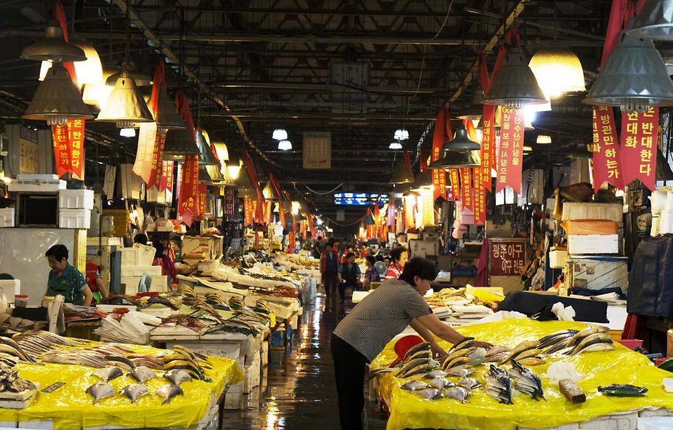 שוק הדגים: לבחור בעצמכם את המנה שתאכלו מייד אחר כך ()