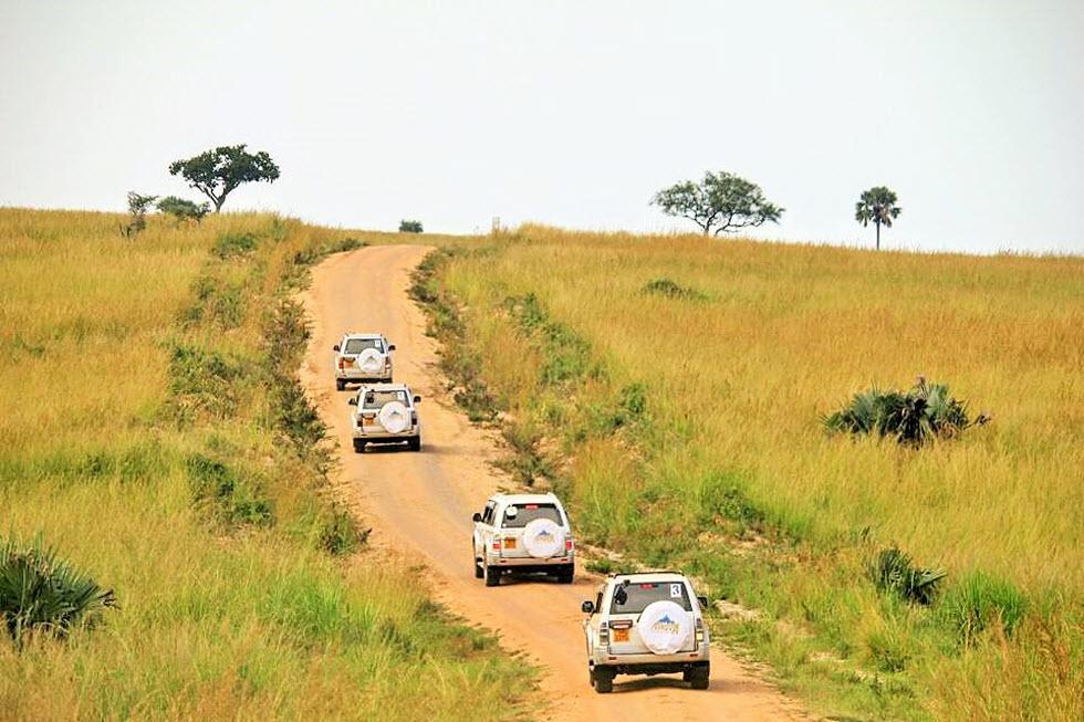 אנחנו נוהגים, ההגה בידיים שלנו, אתה מבין איזה חופש זה? (צילום: מאגמה) (צילום באדיבות מאמגה)