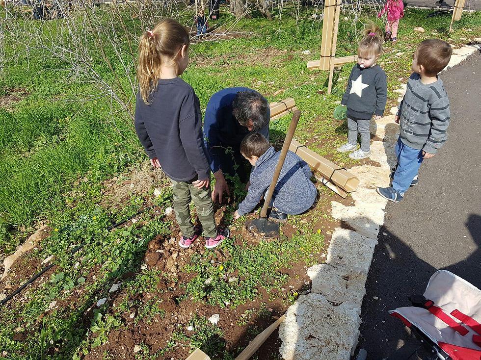 Planting in Alon HaGalil