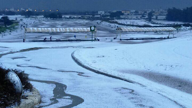 Кейсария, поле для гольфа. Фото предоставлено Лиором Парити