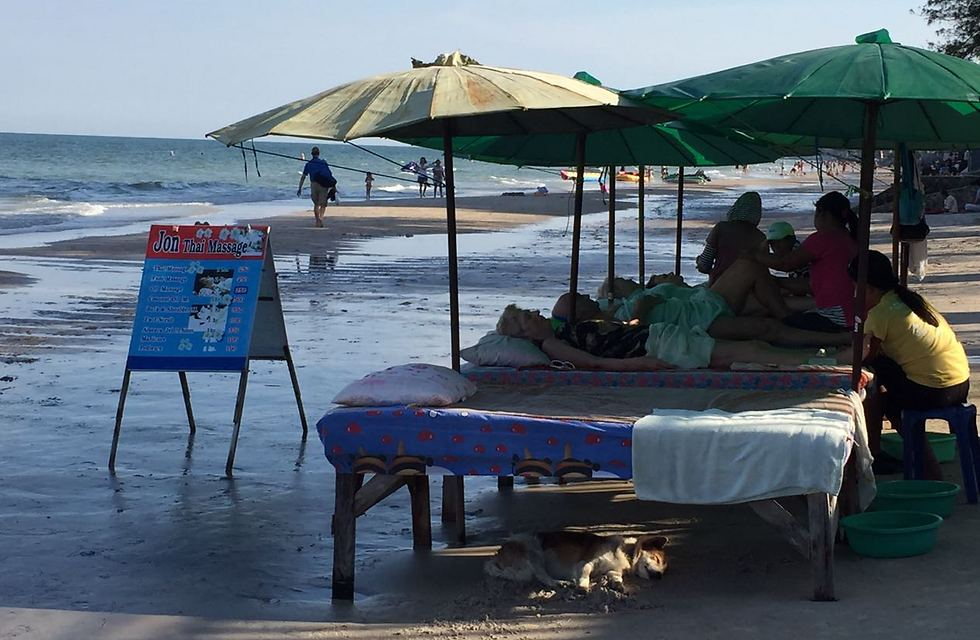 Thai massage on the beach. That pup has the right idea! (Photo: Gaby Zohar)