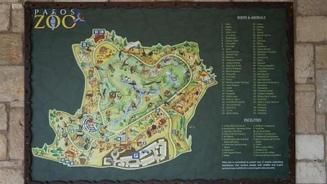 גן החיות Paphos Zoo מומלץ מאוד למשפחות (צילום: דקלה סמית')