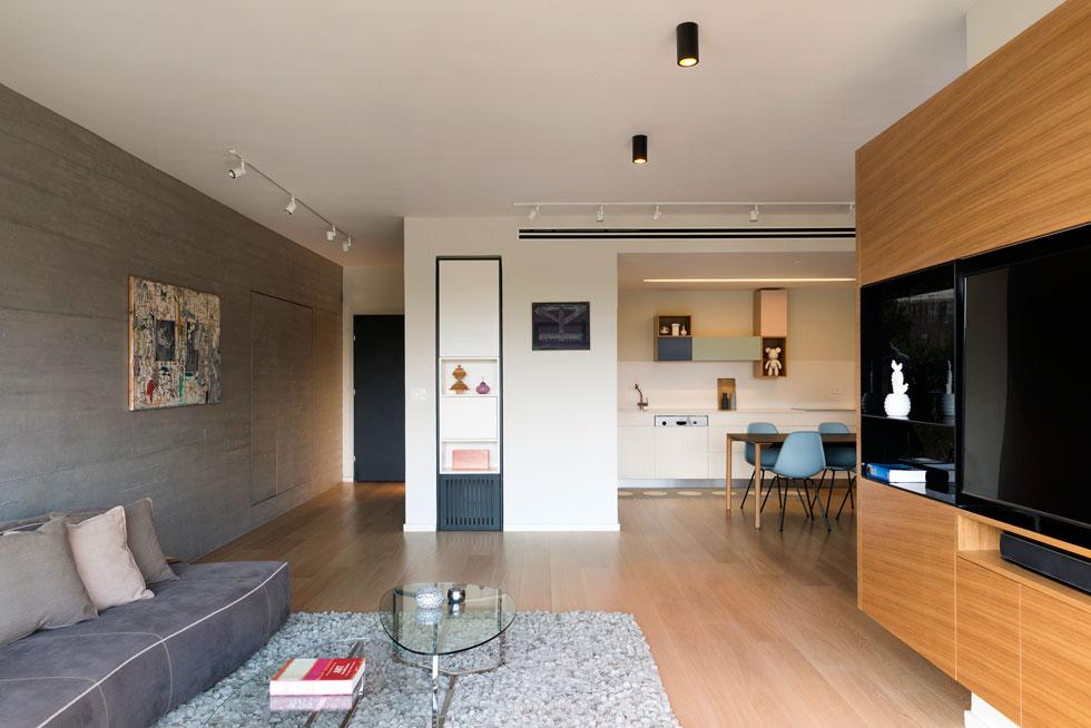 מבט מהסלון אל המטבח והמבואה. ארון למעילים ונעליים חופה בציפוי בטון והוסווה בקיר (צילום: גדעון לוין)