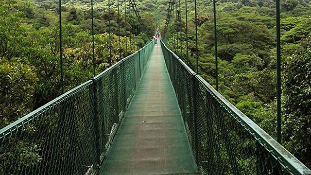שמורת מונטה ורדה: לחובבי גשרים ואקסטרים בטבע הפראי (צילום: שי אהרוני)
