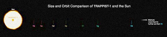 השוואת גדלים: TRAPPIST-1 והשמש שלנו. כל כוכבי הלכת קרובים אליו יותר מכוכב חמה, הקרוב ביותר לשמש שלנו  (הדמיה: ESO)