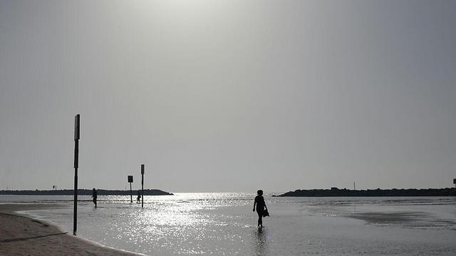 חוף הים בתל אביב (צילום: ירון ברנר) (צילום: ירון ברנר)