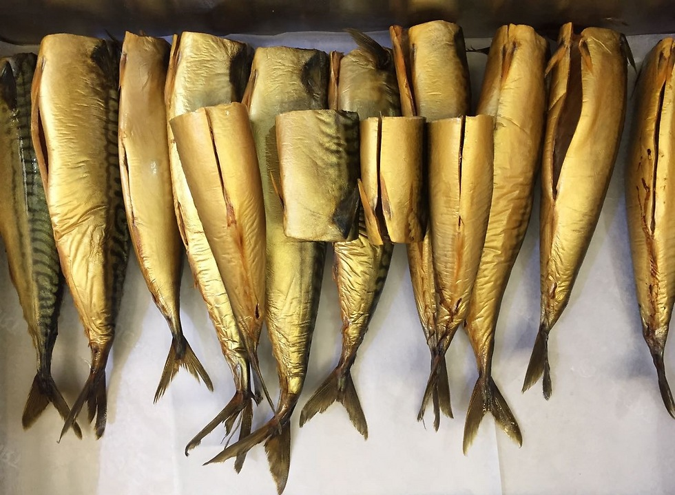 אין ים, אבל יש דגים (צילום: גיא גמזו) (צילום: גיא גמזו)