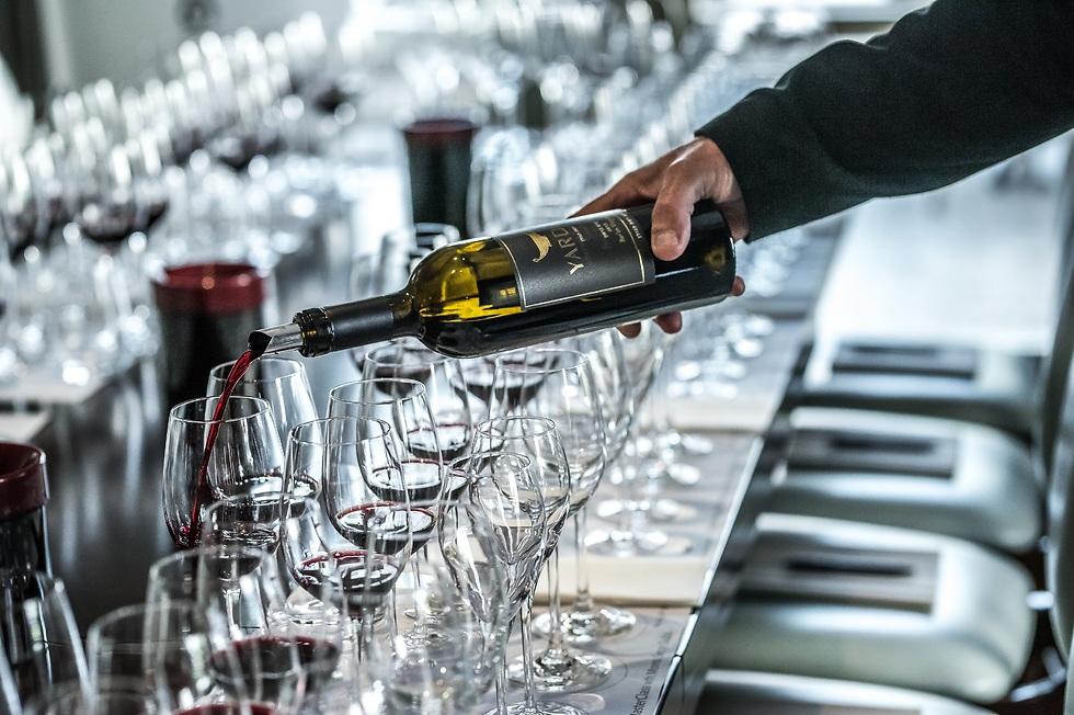"""מדי פעם מוצאים מישהו שמתעניין ביין ישראלי"", דובס (צילום: עידן סבח)"