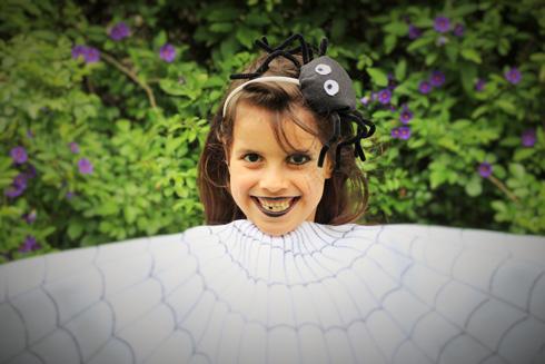 קשת עם עכביש להשלמת המראה (צילום: ליטל כהן)