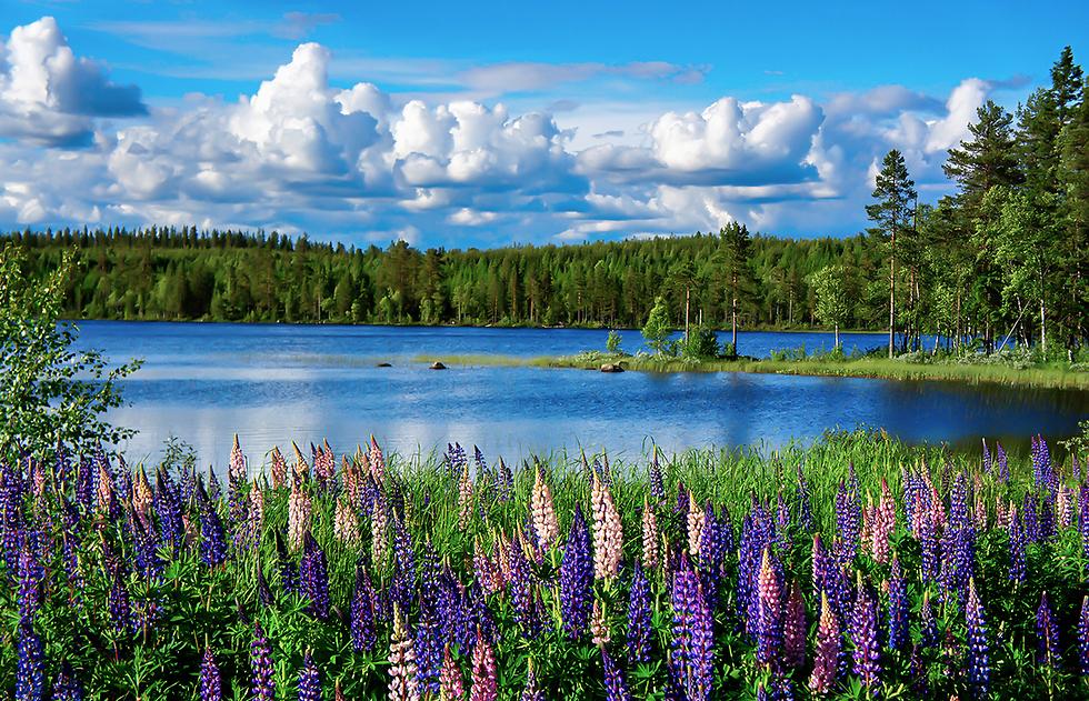 כשמזג האוויר נעים הכל הולך יותר טוב: טיול קיץ בצפון מערב אירופה (צילום: DepositPhotos)