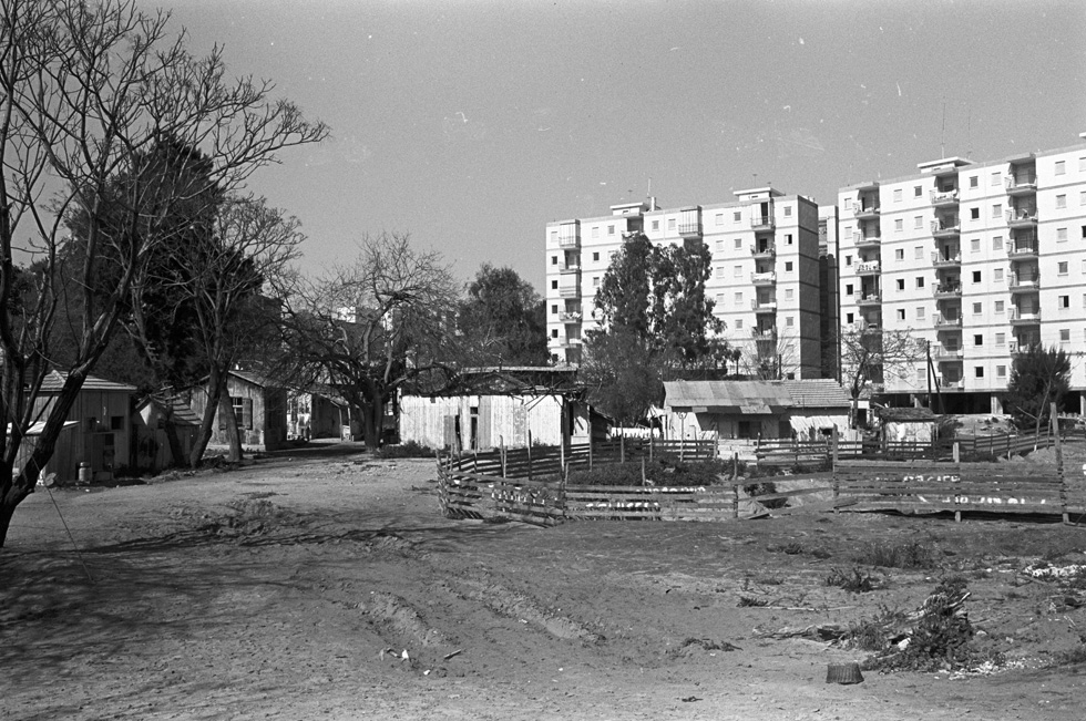 יום אחד יהיה כאן דיזנגוף סנטר. צריפי שכונת נורדיה עדיין לא מפונים, אך הבניינים שממתינים לדייריהם כבר נמצאים ברקע. לפני תחילת הבנייה (צילום: דוד רובינגר)