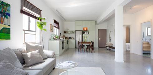 מראה כללי. משמאל: הסלון, פינת האוכל והמטבח. מימין: חדר הרחצה והשירותים, חדר השינה וחדר העבודה הסגור רק חלקית בקיר (צילום: שי אפשטיין)
