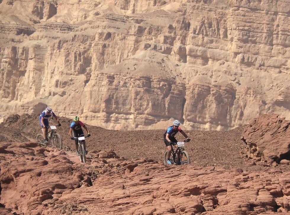 רוכבים במדבר. סינגל תמנע (צילום: צביקה בורג)