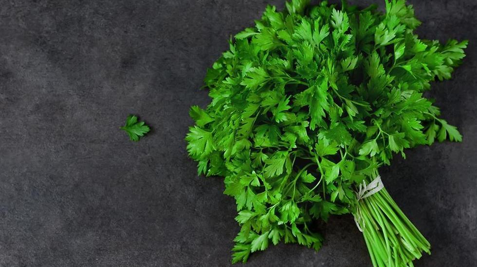 להוסיף טעם בלי להזיק לבריאות. עשבי תיבול (צילום: shutterstock) (צילום: shutterstock)