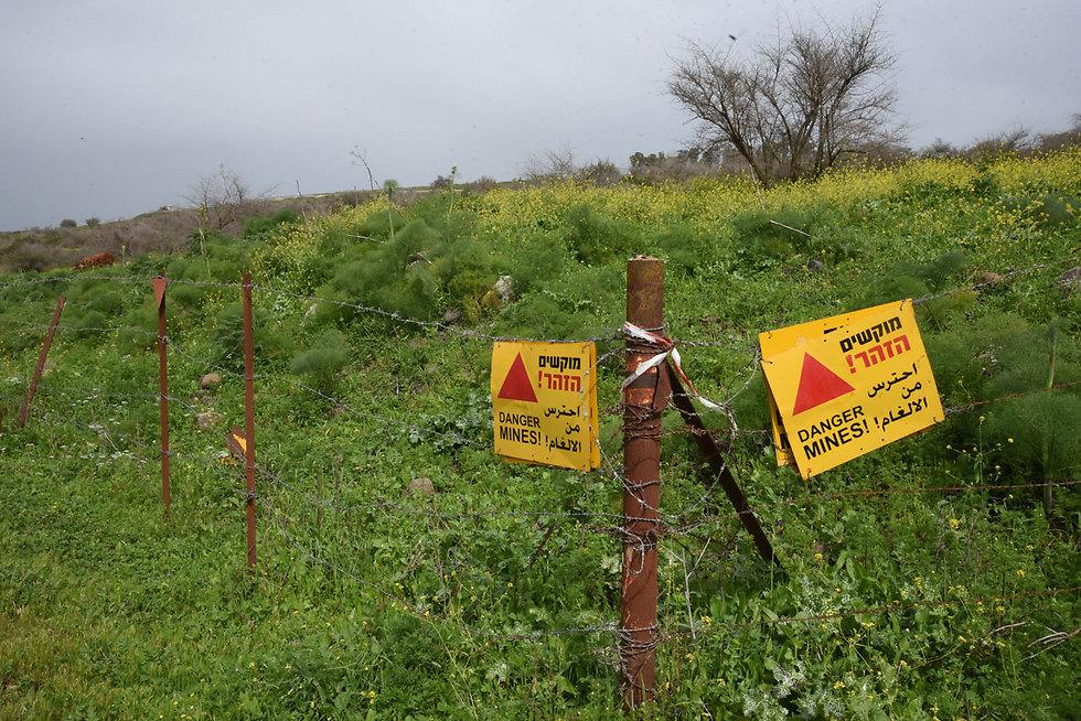 Осторожно, мины. Фото: Ариягу Шапира