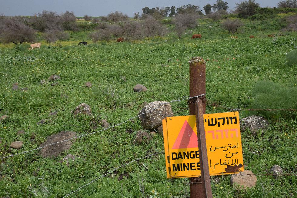 The suspected minefield (Photo: Avihu Shapira)