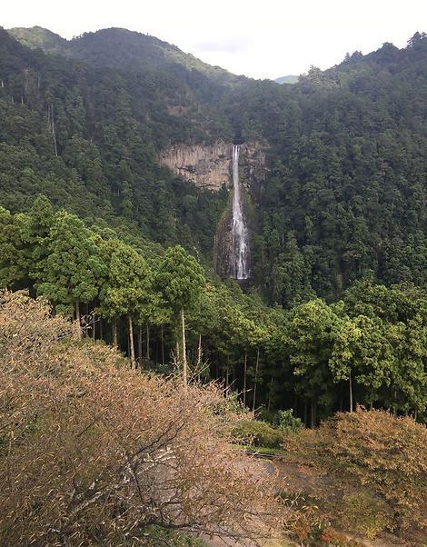 להרגיש ביקום מקביל: הצד האחר של יפן, מחוז וואקאיאמה (צילום: שירי הדר)