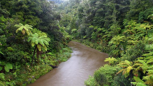 נהר וואנגנוי בניו זילנד (צילום: shutterstock) (צילום: shutterstock)