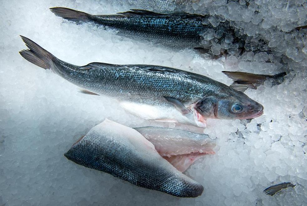 על הקרח או בקירור. שימו לב איך מוכר הדגים שומר על הסחורה (צילום: ירון ברנר) (צילום: ירון ברנר)