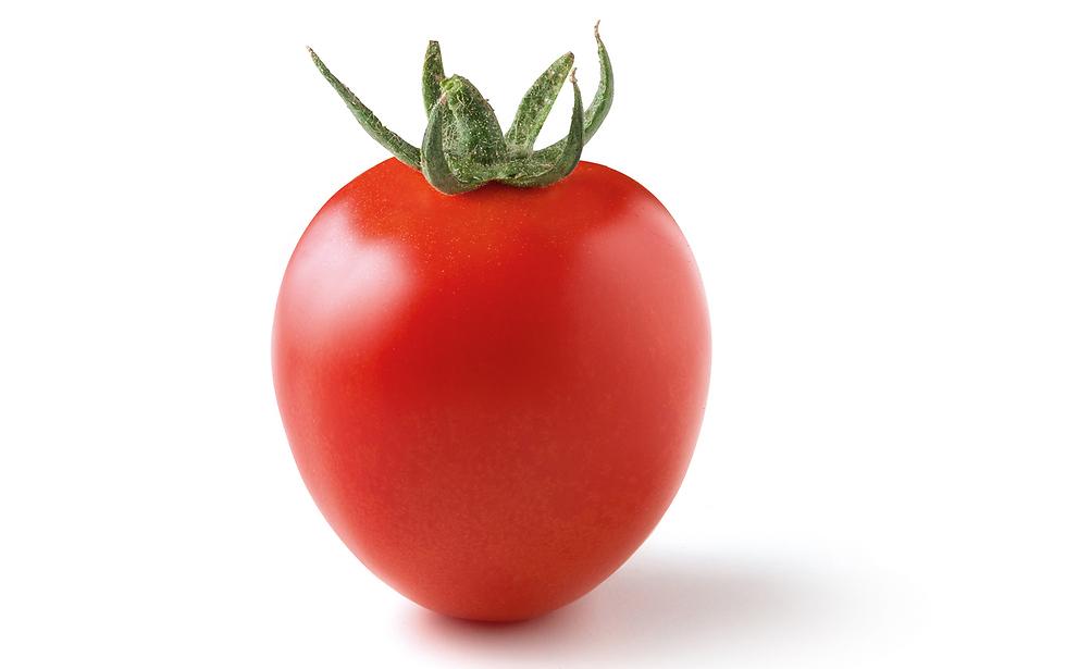 """שלהבת – """"עגבנייה שצורתה מזכירה לב או טיפה""""  (צילום: זרעים-גדרה) (צילום: זרעים-גדרה)"""