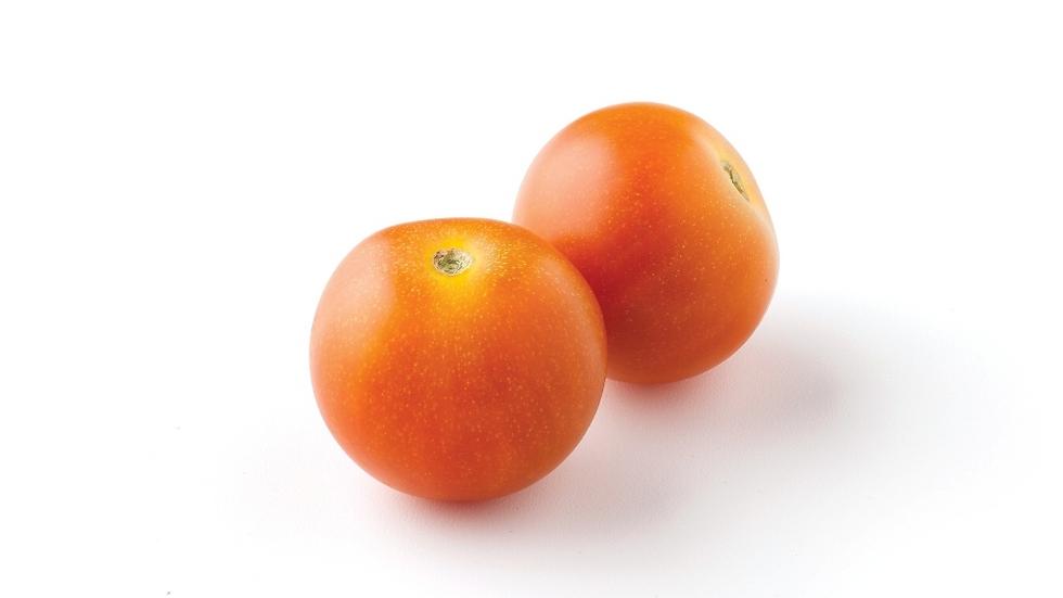 """נבולה – """"עגבניית צ'רי נבולה (Nebula) - פיצוץ של טעם"""""""" (צילום: זרעים-גדרה) (צילום: זרעים-גדרה)"""