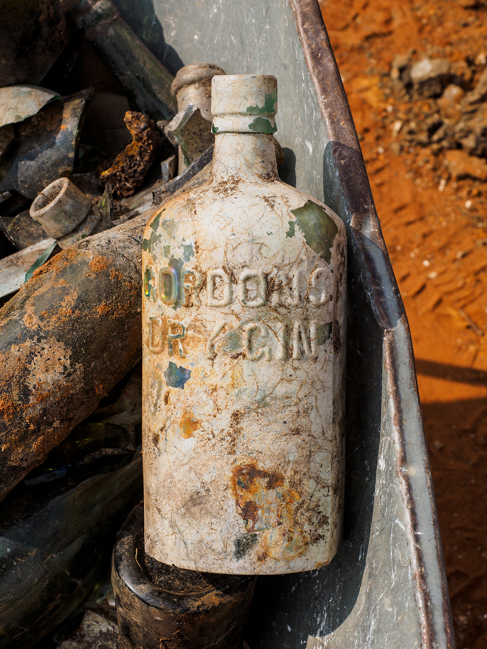 A bottle of Gordon's Dry Gin. (Photo: Assaf Peretz, courtesy of IAA)