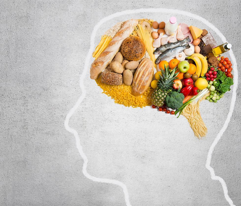 רעב ושובע. הכל מתחיל במוח ()