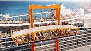 צילום: Celebrity Cruises