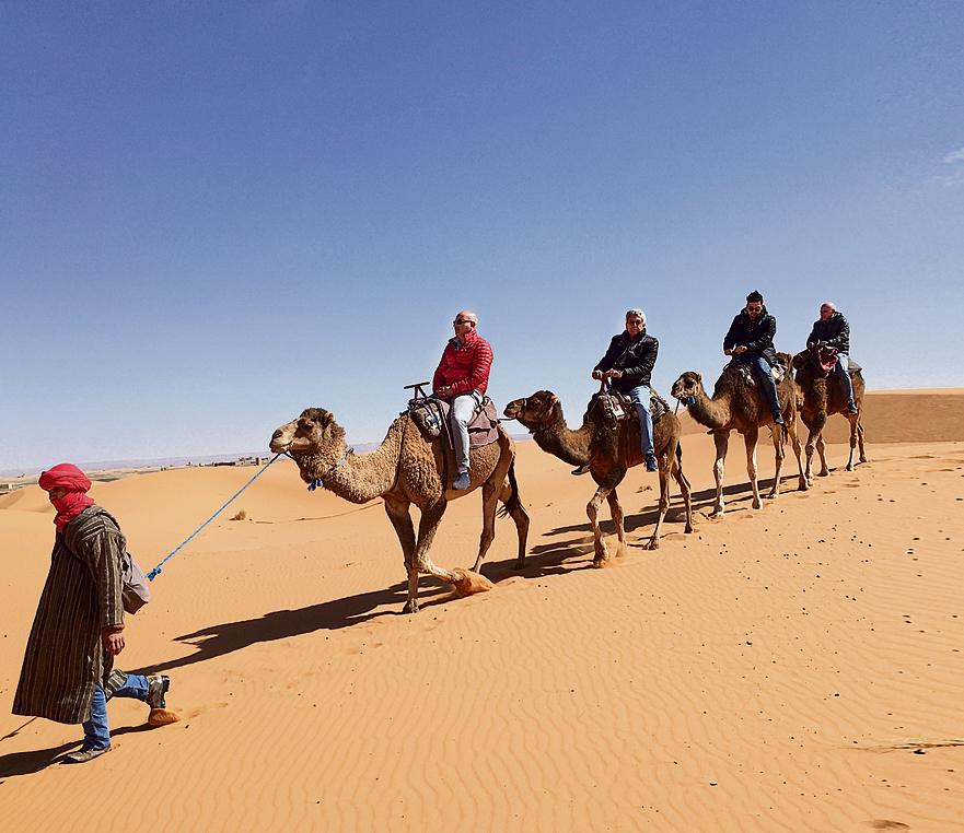 """אני וחבריי למסע על שיירת גמלים. המושג האמריקאי שנקרא """"חלל אישי"""" לא קיים בכלל במרוקו. אז אם זו בעיה עבורכם — סעו לדנמרק"""