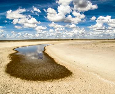 טנזניה מתייבשת ברפובליקה השוכנת במזרח אפריקה יש שתי עונות גשומות בשנה: קצרה (נובמבר־דצמבר) וארוכה (מארס־מאי). אבל השנה העונה הגשומה הקצרה הייתה שחונה והעונה הגשומה הארוכה בוששה להגיע. התוצאה: מקווי מים יבשים וקרקע מחורצת וצמאה.