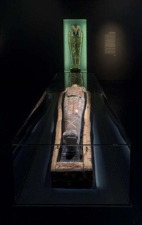 חבר מהעבר הרחוק. המומיה במוזיאון ישראל (אלי פוזנר) (אלי פוזנר)