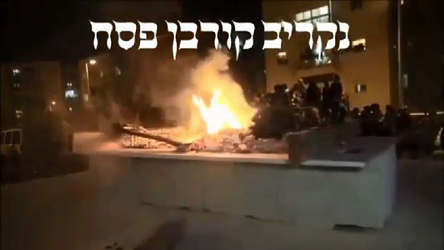 """""""We will perform a Passover sacrifice"""" (Photo: Temple Mount Movement)"""