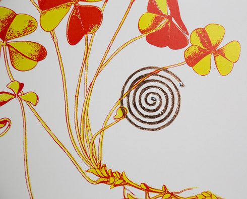 לוקה אור הדפיס ספירלות מוליכות סאונד על דימויים, והפך את הנייר לרמקול (צילום: הדר סייפן)