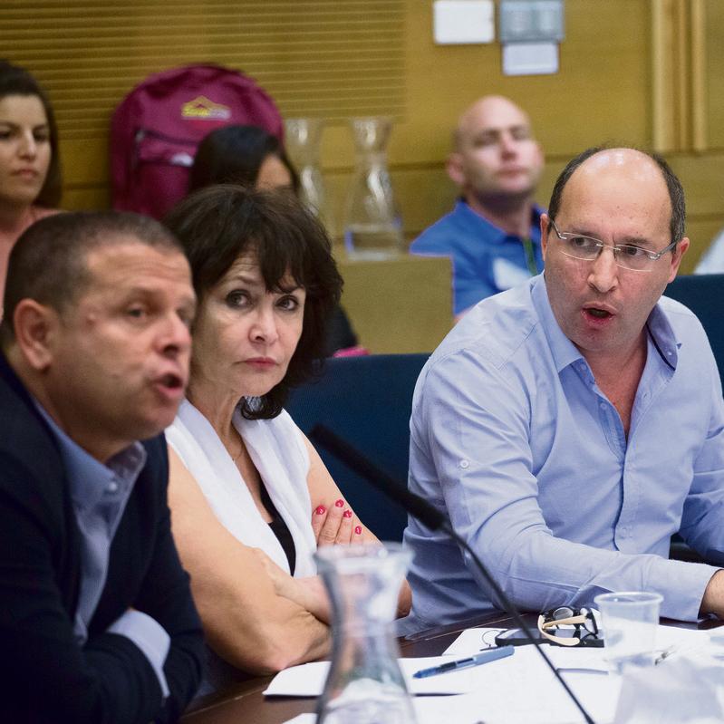 דיון בועדת הכלכלה | צילום: אוהד צויגנברג