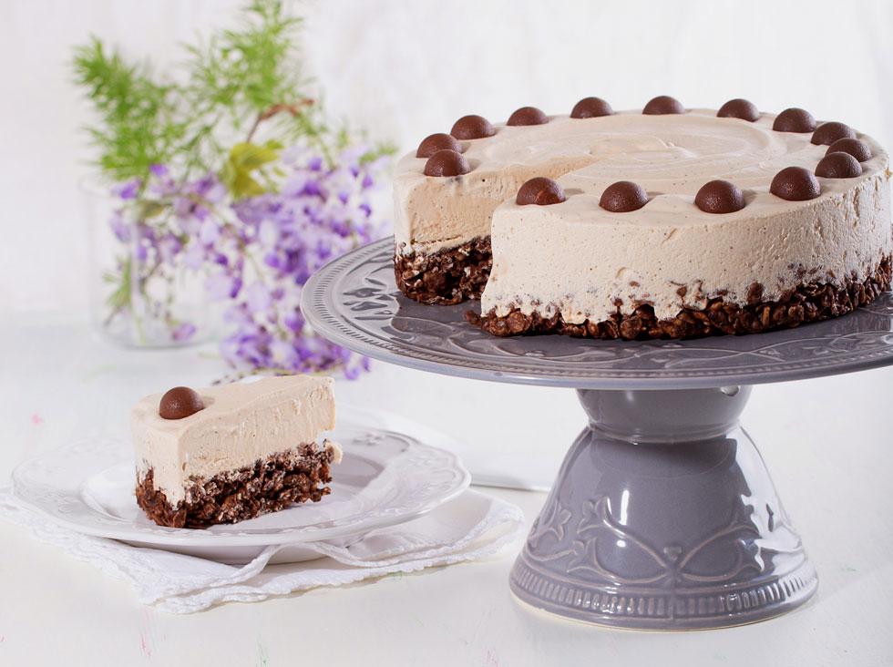עוגת גלידה קפה ושוקולד  (צילום: שרית גופן, סגנון: נעמה רן)