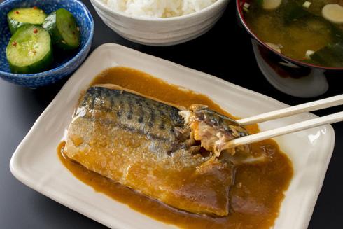 דג מקרל במיסו (צילום: Shutterstock)