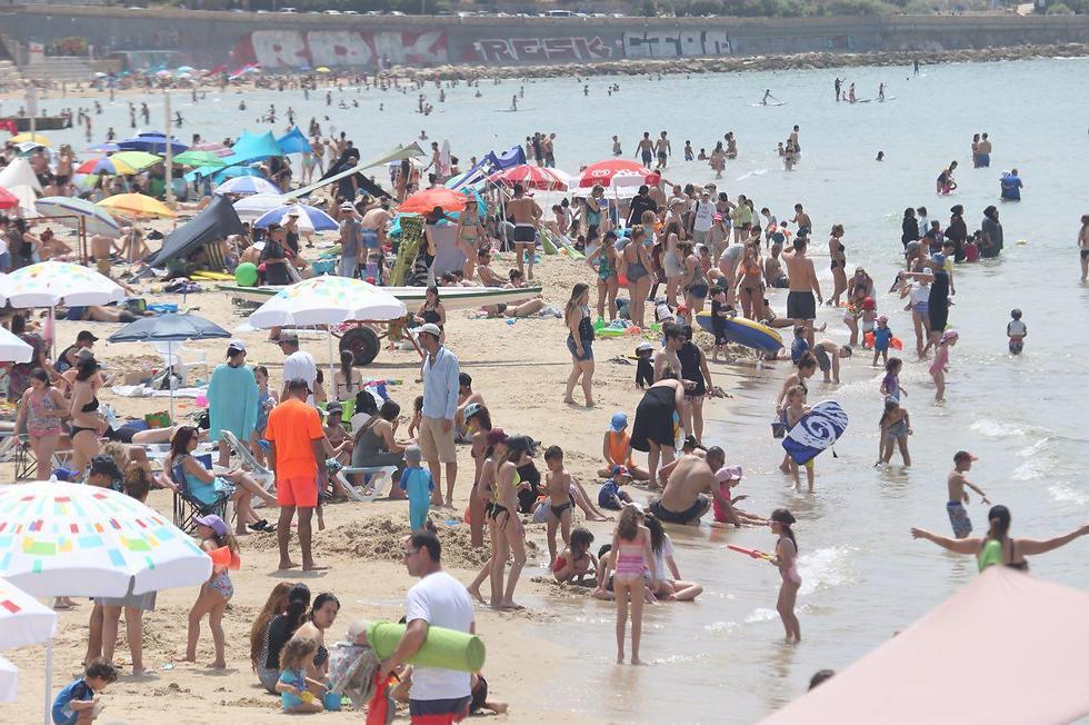 Пляж в Тель-Авиве. Фото: Моти Кимхи