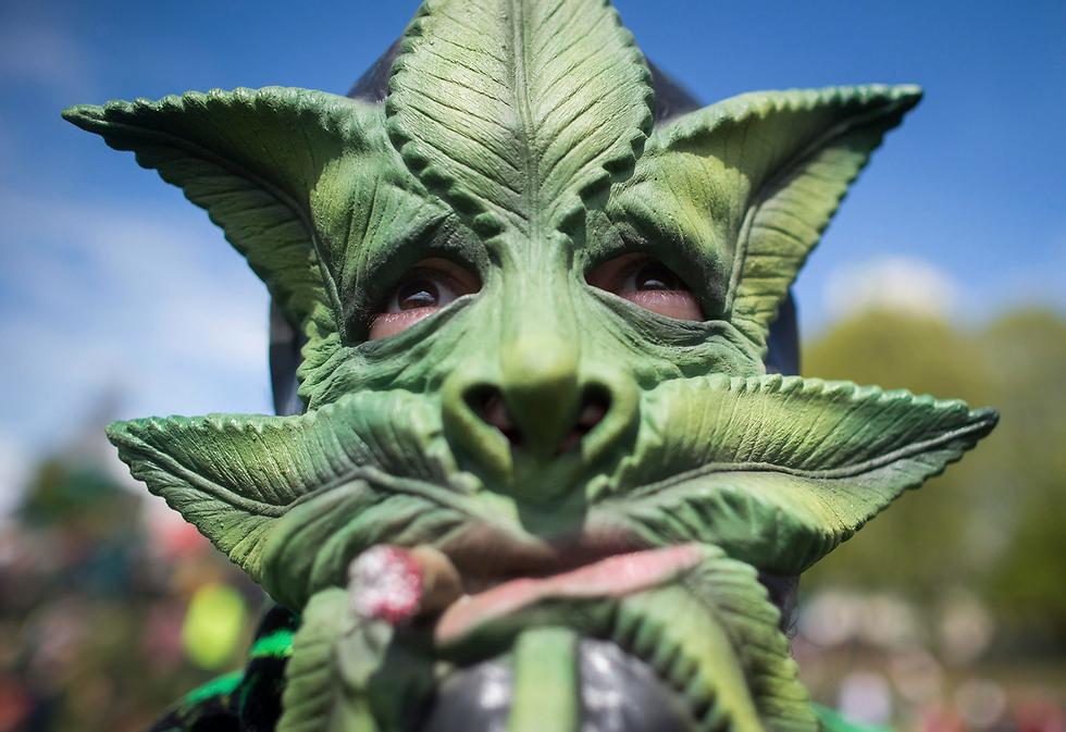 מפגין עוטה מסכת מריחואנה באירוע לרגל יום המריחואנה הבינלאומי, קנדה (צילום: AP, Darryl Dyck/The Canadian Press)