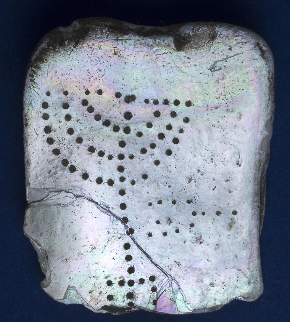 הלוחיות שעליהן נחרתו המנורה והקנים (צילום: קלרה עמית, רשות העתיקות)