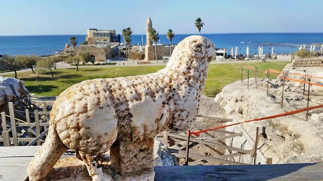 פסל אַיִל שהתגלה בסמוך לקמרונות שבחזית במת המקדש (צילום: החברה לפיתוח קיסריה)