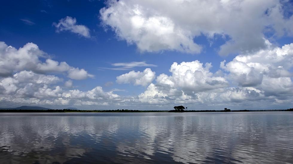 נהר הרופיג'י - הגדול ביותר בטנזניה  (צילום: shutterstock)