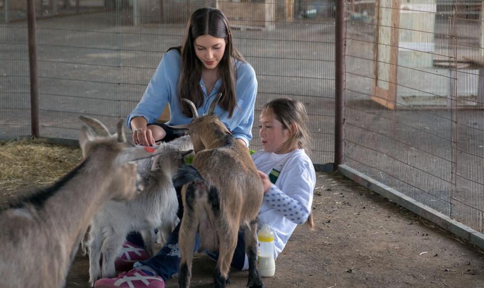 """מרכז """"תלמים"""" מתמקד בטיפול בעזרת בעלי חיים. המועמדת זהבית סימון (צילום: רויטל אילוז)"""
