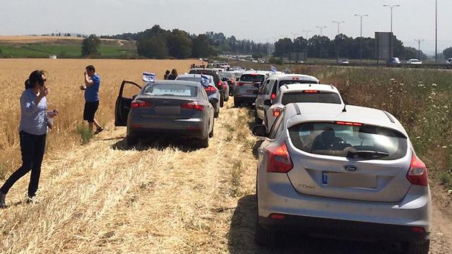 נתקעו בשדה ליד תל נוף (צילום: אדליה שמעוני) (צילום: אדליה שמעוני)