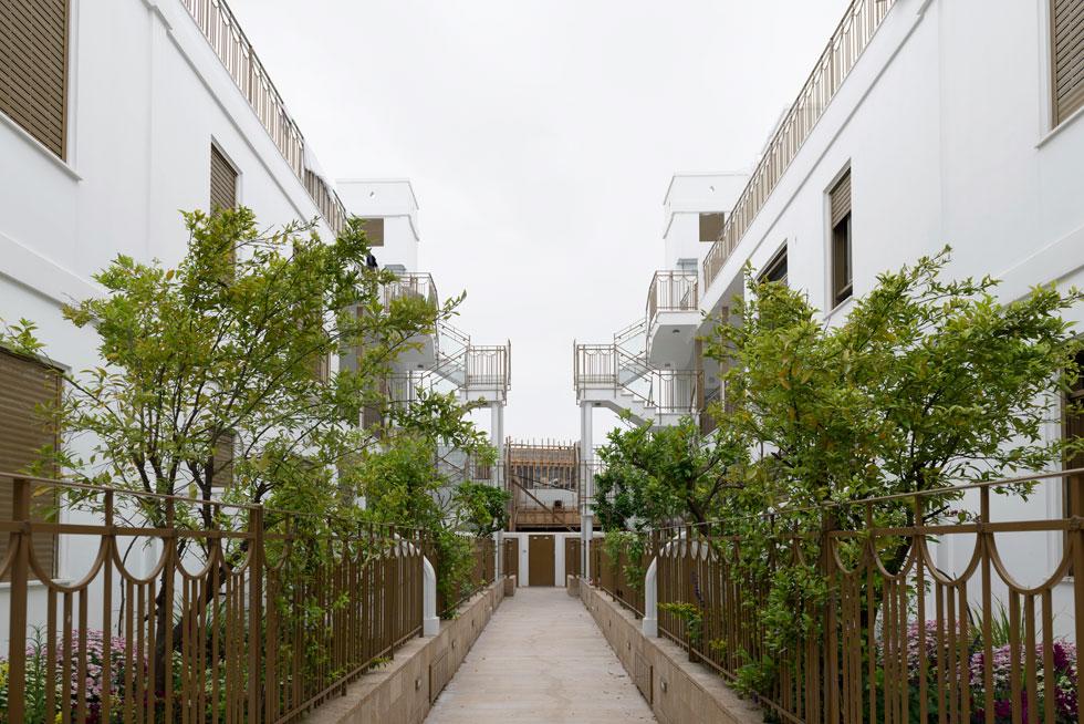 הרעיון יוצא דופן, ולא פגע בזכויות הבנייה של היזם. הן נוצלו במלואן (צילום: גדעון לוין)