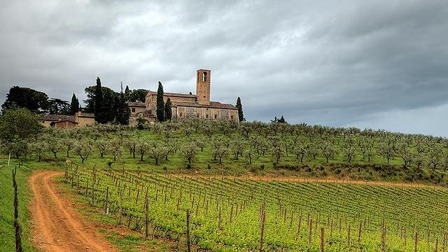 אחד האיזורים הידועים באיטליה. טוסקנה (צילום: סוזי אביב ואלון קירה)