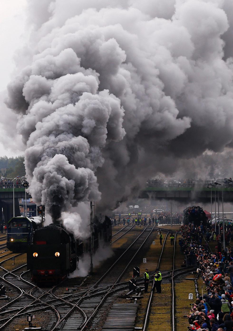 מצעד רכבות הקיטור ה-24 בעיר הפולנית וולשטין (צילום: רויטרס)