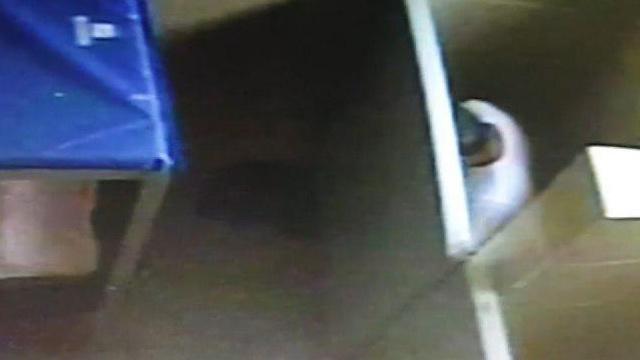 מנסה להסתתר מהמצלמה (צילום: שירות בתי הסוהר) (צילום: שירות בתי הסוהר)