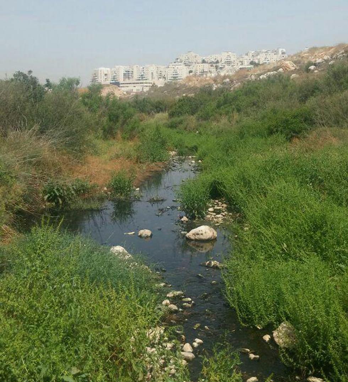 (צילום: איגוד ערים איכות הסביבה שומרון)